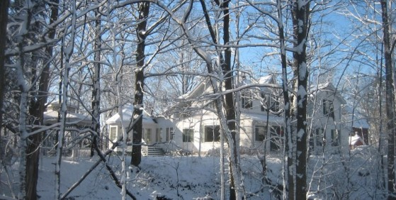 Crystal River Inn - Winter through the trees