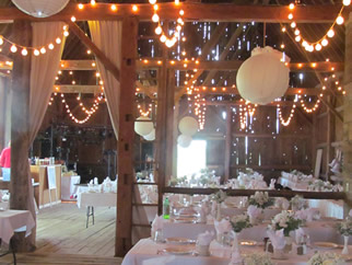 Willow Pond Wedding