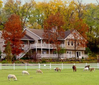 The Speckled Hen Inn