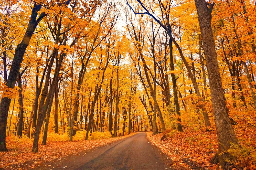 Stunning Door County Fall Colors in Wisconsin