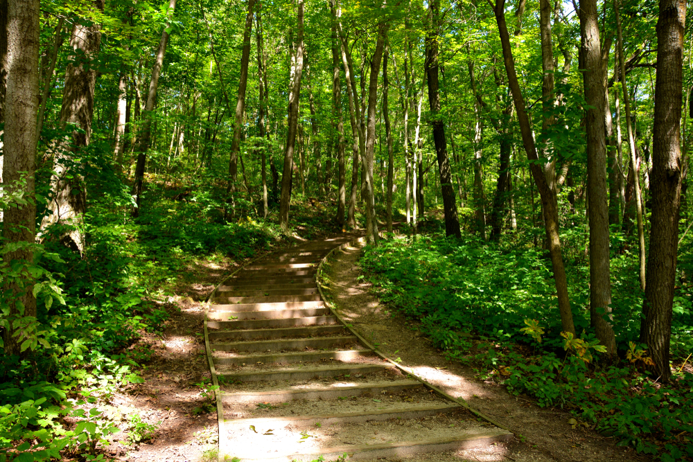 One of the best places for hiking in Wisconsin is the Kettle Moraine State Forest